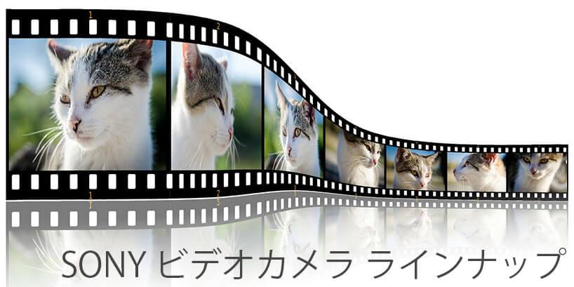 [2017年版] ソニーのビデオカメラ14機種とその特長まとめ