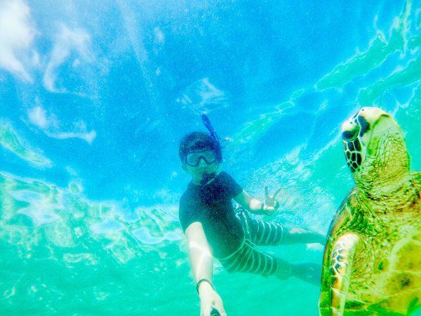 GoProなどアクションカメラで撮影したインスタジェニックな作品 海中