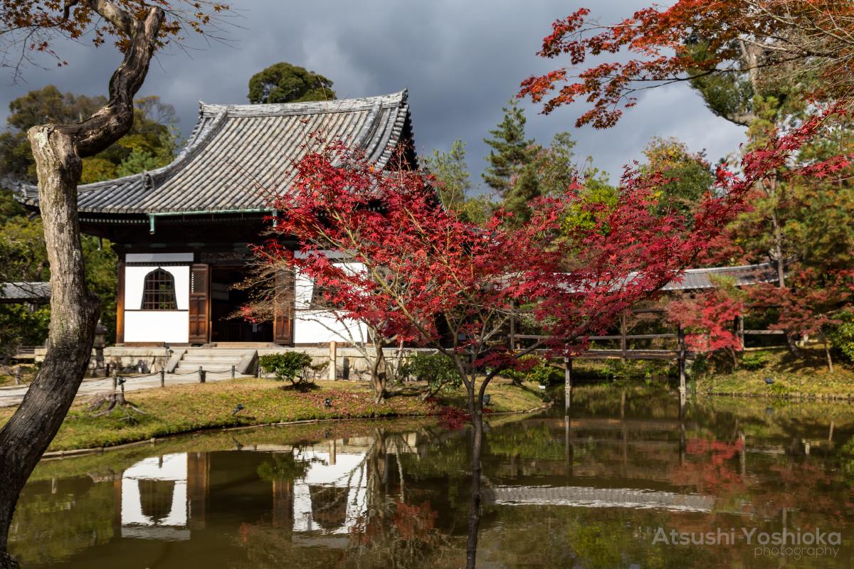 EOS6D高台寺