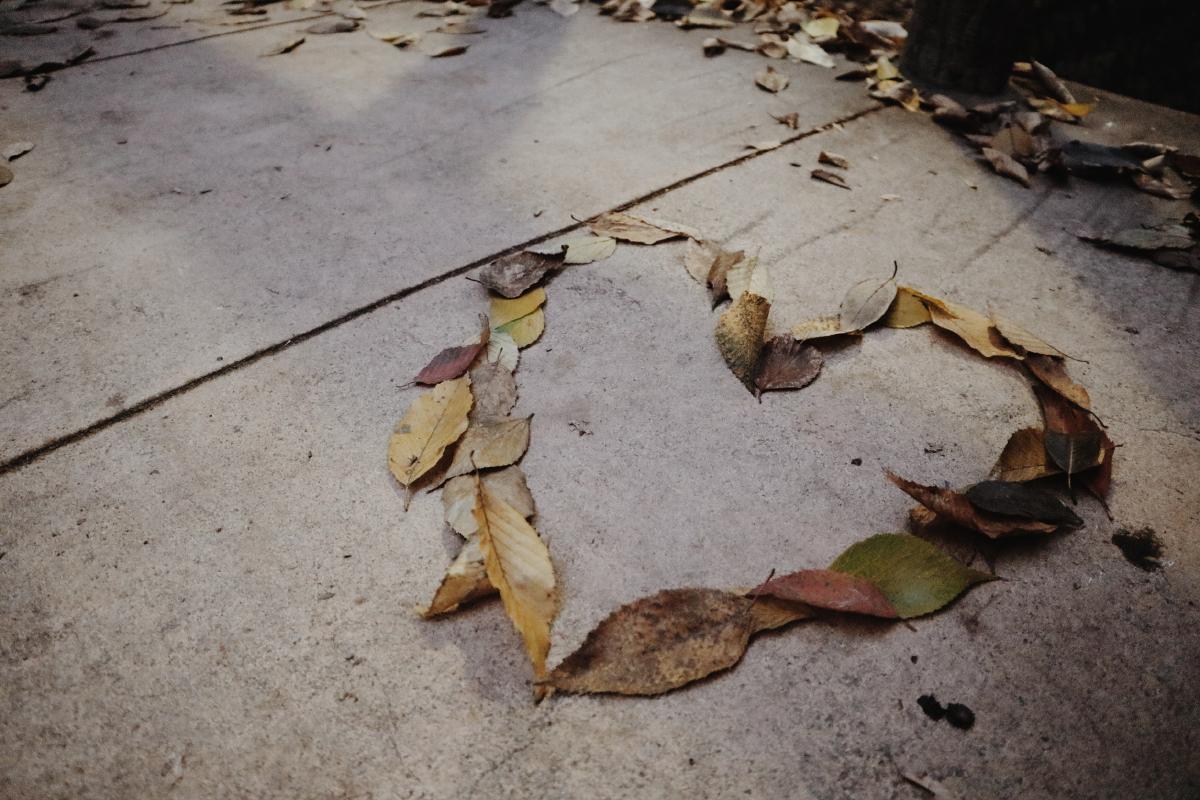 ハート 落ち葉