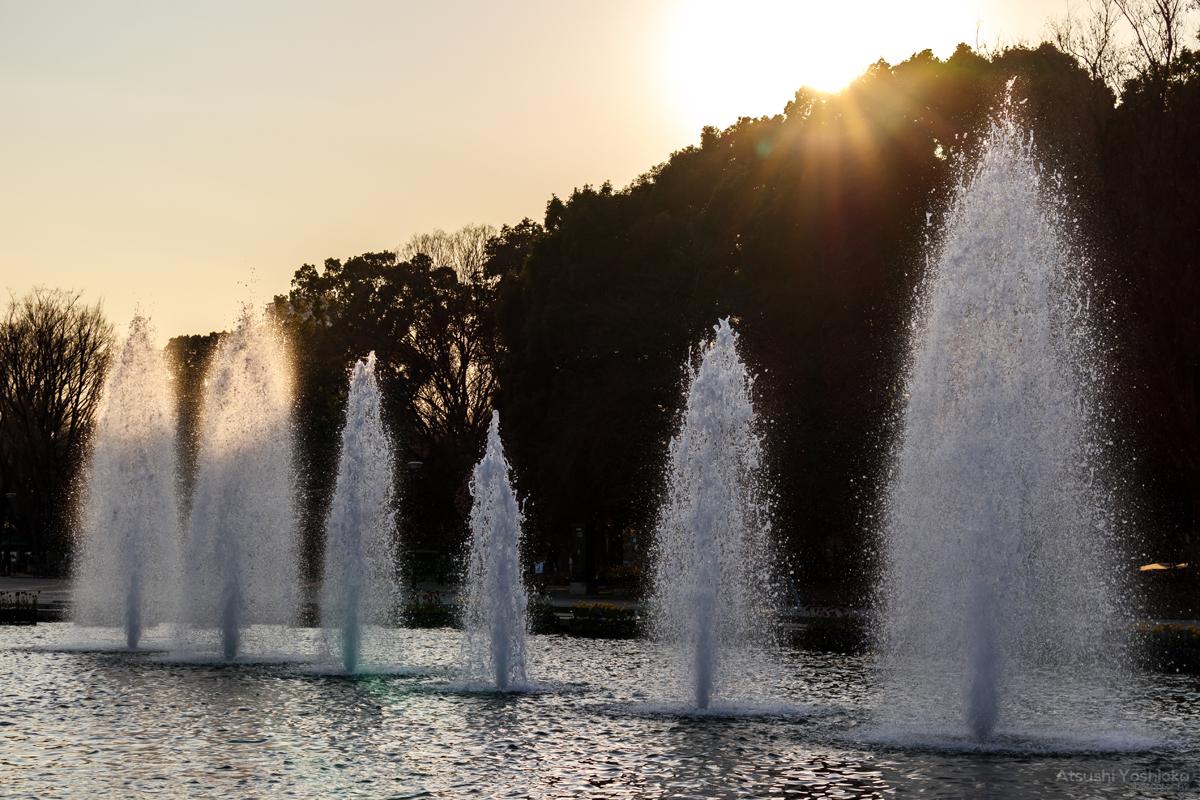 上野恩賜公園 大噴水