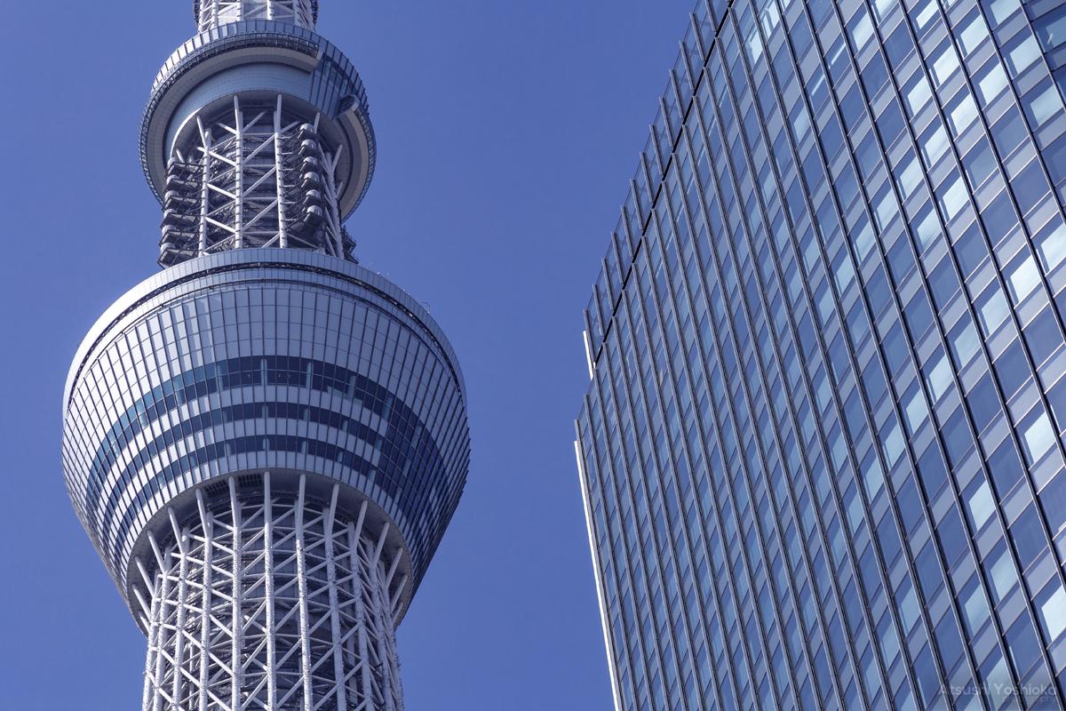 東京スカイツリー 京成橋
