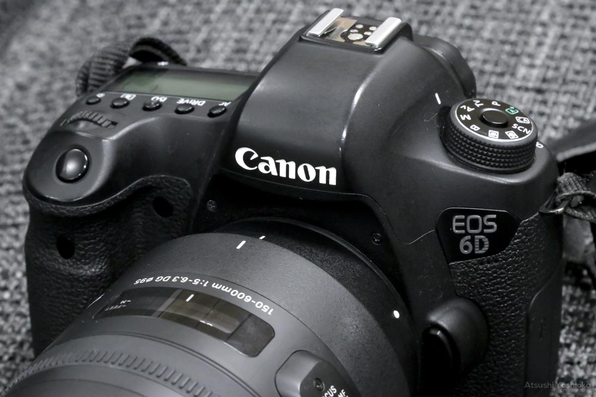 EOS 6D + SIGMA 150-600mm F5-6.3 DG OS HSM