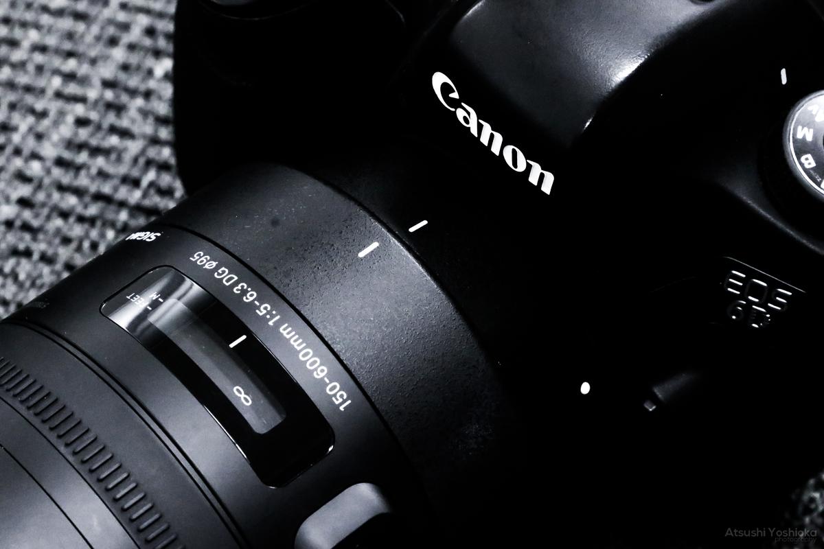 SIGMA 150-600mm F5-6.3 DG OS HSM レビュー