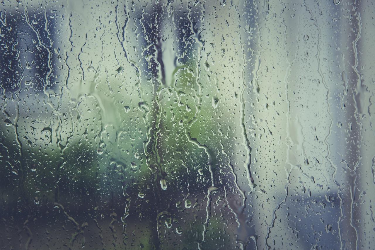梅雨 部屋 空気清浄機