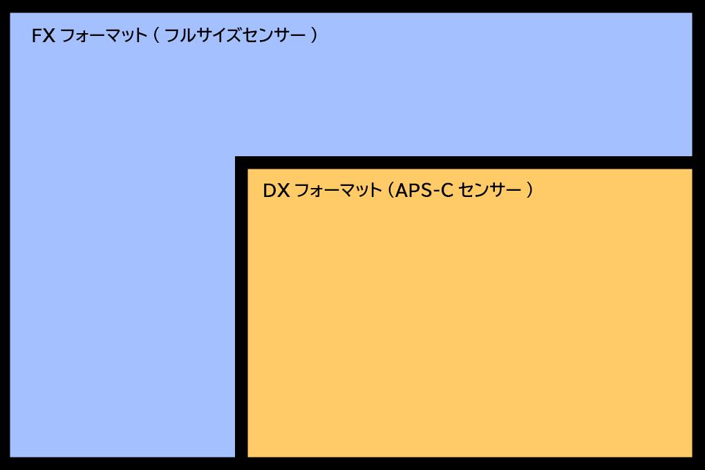 FXフォーマット DXフォーマット 違い