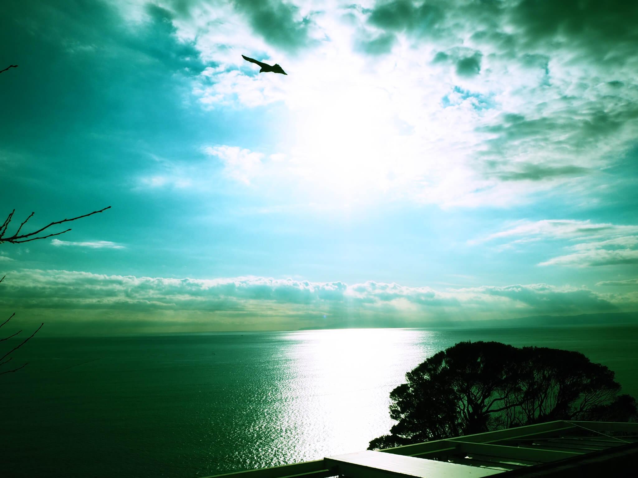 江ノ島 撮影