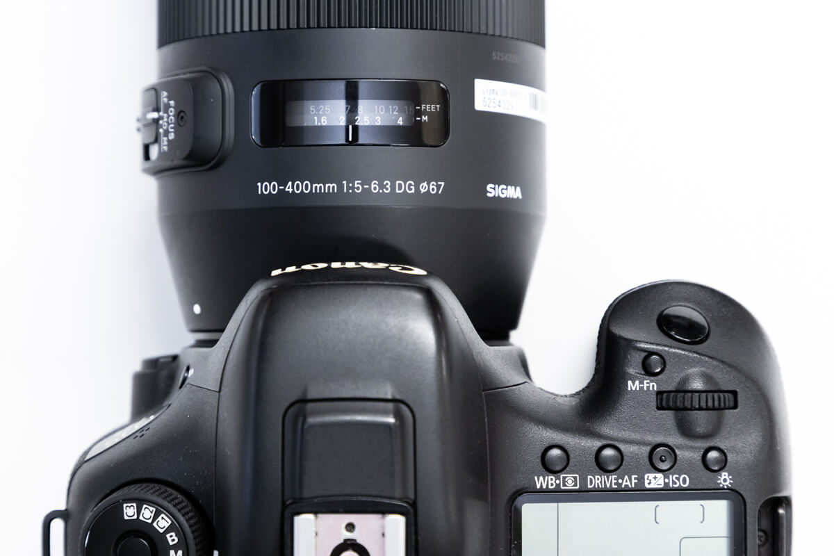 SIGMA 100-400mm F5-6.3 DG OS HSM レビュー