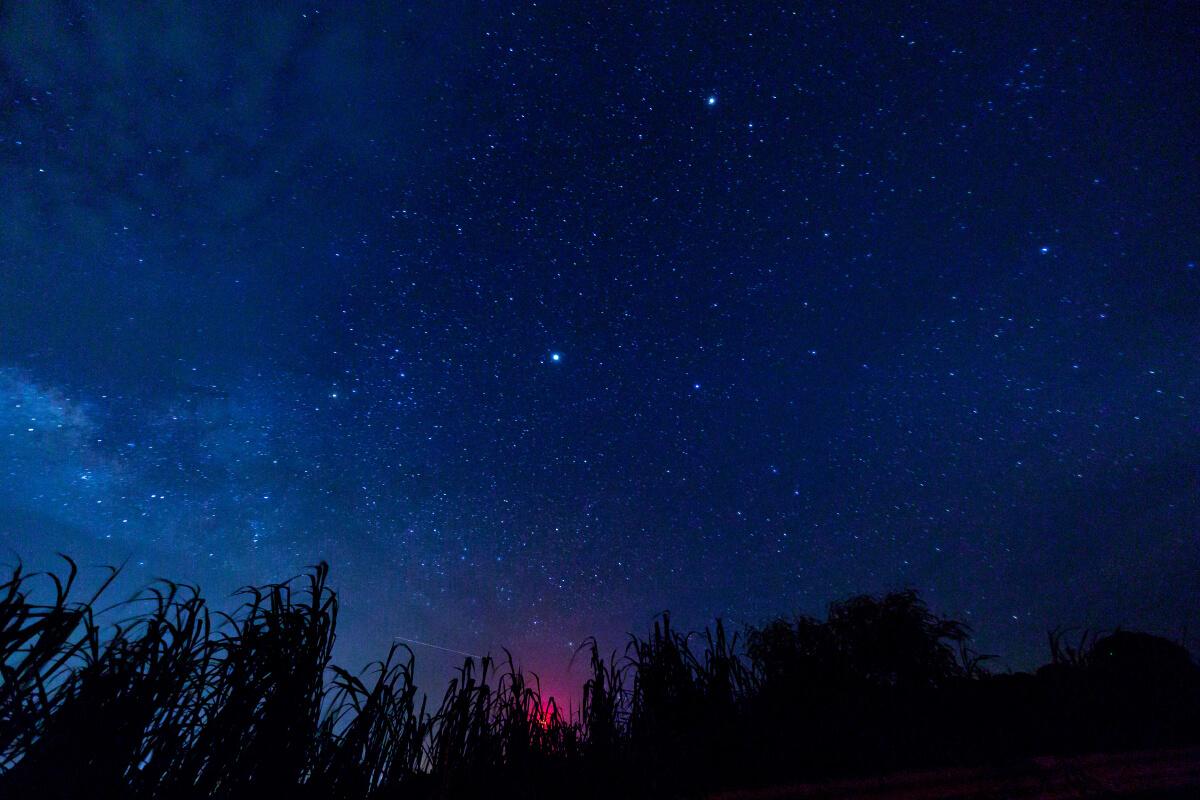 星空撮影 一眼カメラ