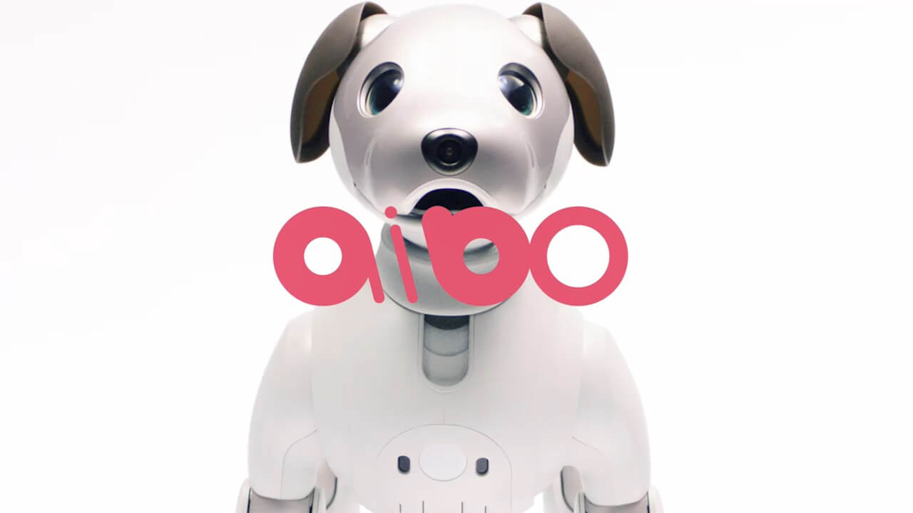 [aibo vs 本物の犬] 気になる年間費用とメリット・デメリットを徹底比較!