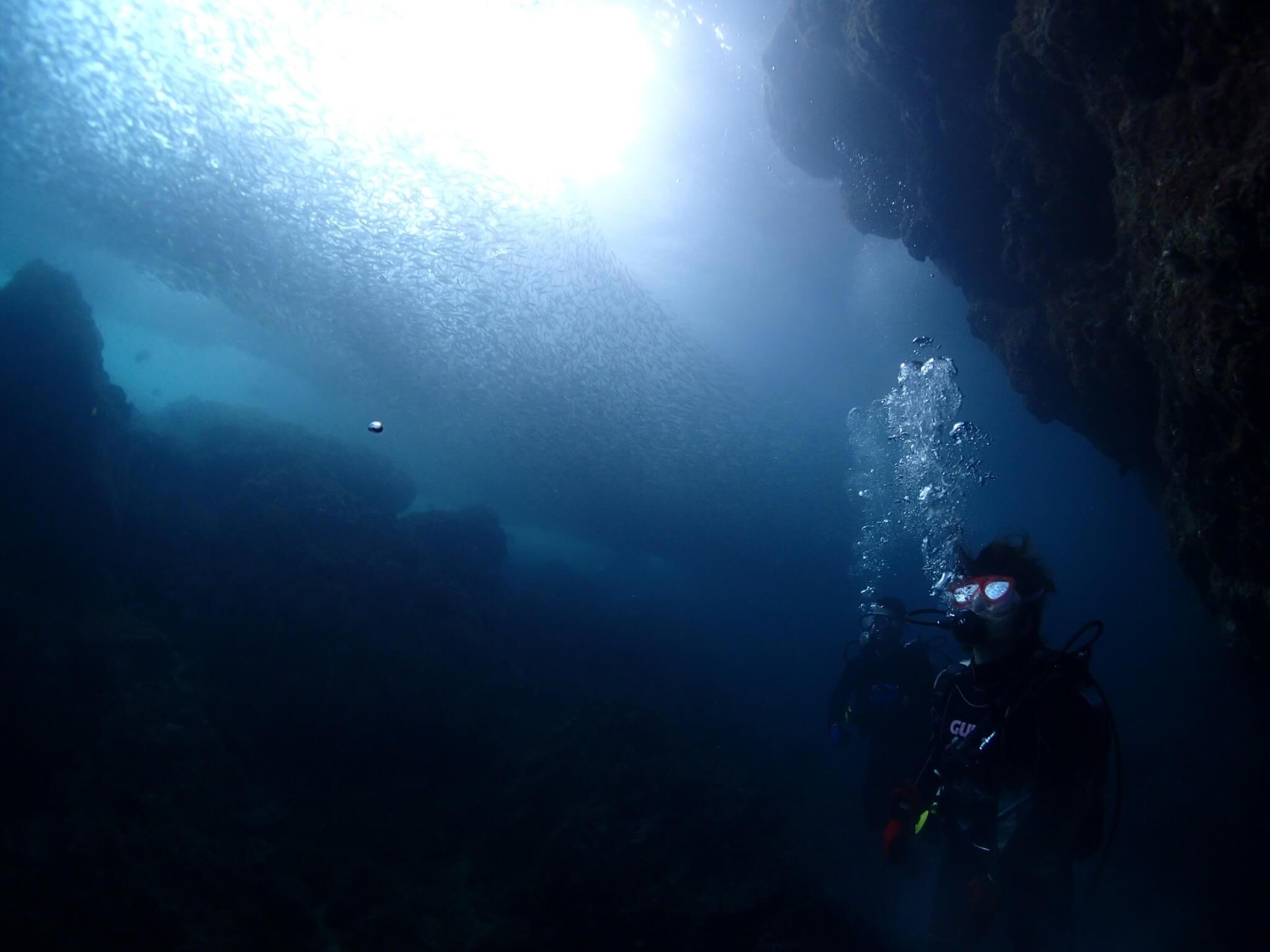 ダイビングに最適な水中カメラの選び方 何m潜る?カメラの防水性能は最重要項目