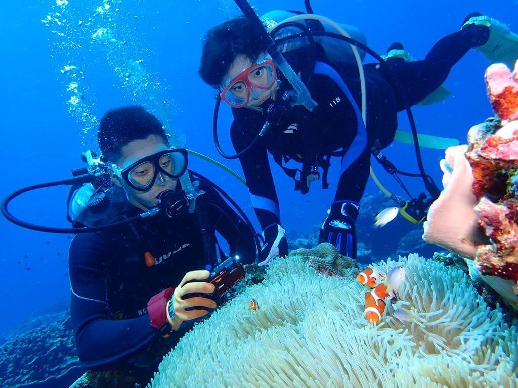 ダイビングに最適な水中カメラの選び方 手軽さのカギ!防水ハウジングの有無