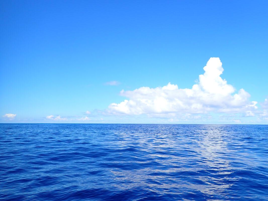 [2021年版] 防水カメラの選び方と最新おすすめ10機種を紹介