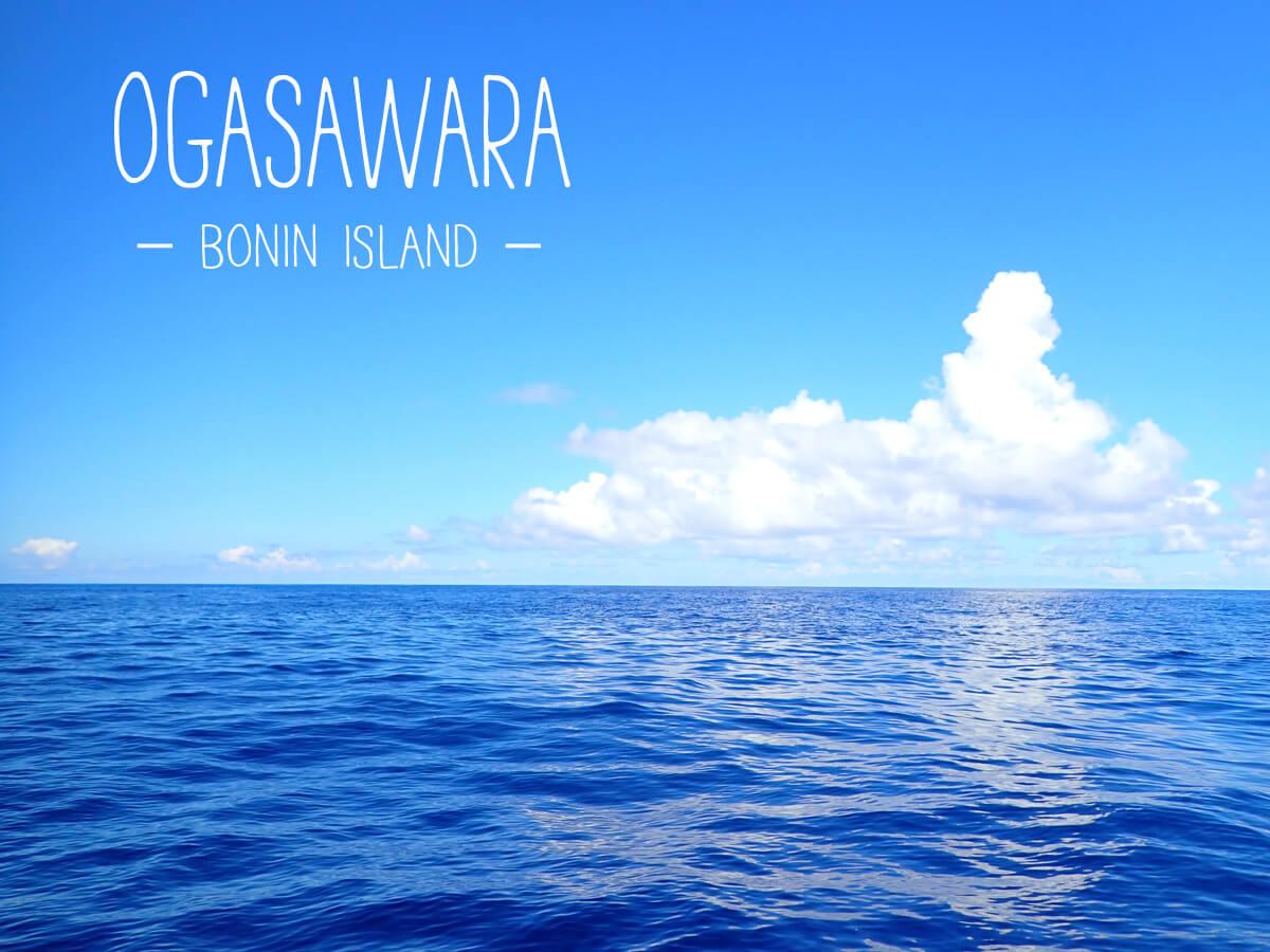 小笠原父島 海派におすすめの楽しみ方と観光スポット19選。世界遺産の島を遊びつくそう