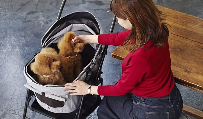分離型ペットカートを選ぶ際の注意点