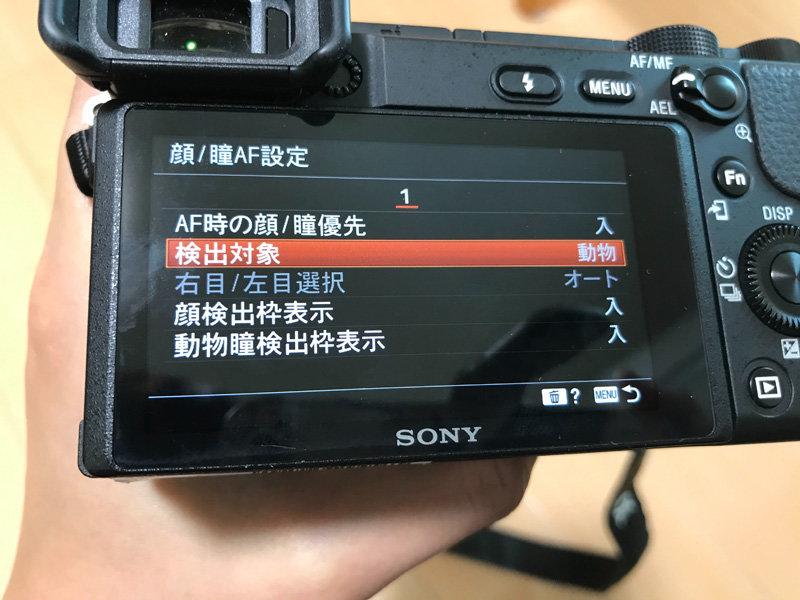 まず始めにやっておくべきカメラの基本設定 2. 動物瞳AFをONにする