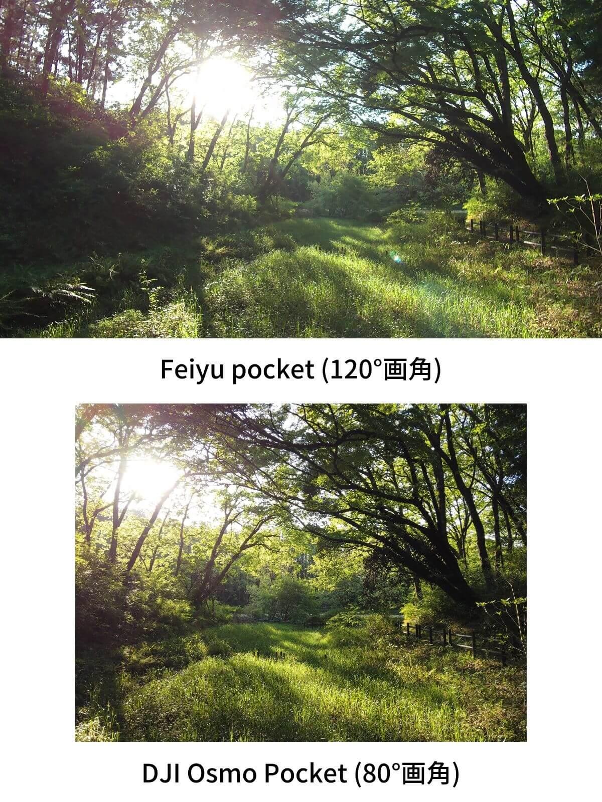Feiyu pocket DJI Osmo Pocket 画角比較