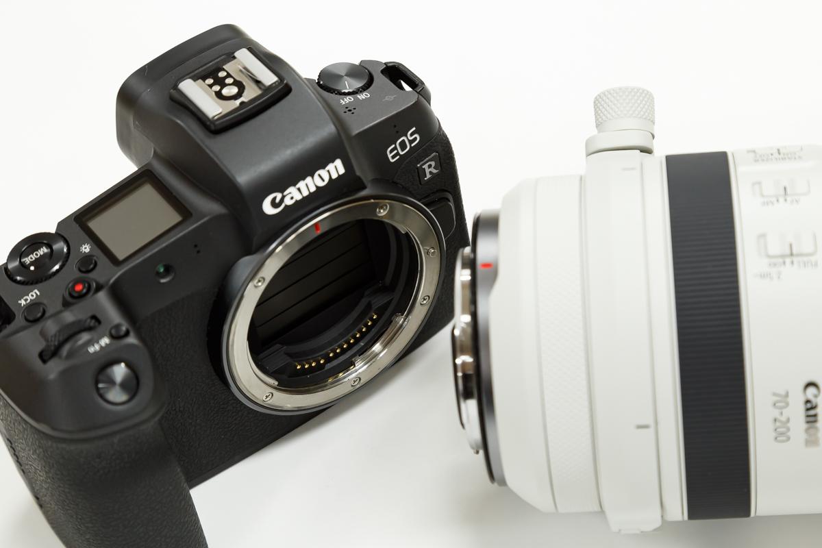 RF70-200mm F2.8 L IS USM EOS R 組み合わせ