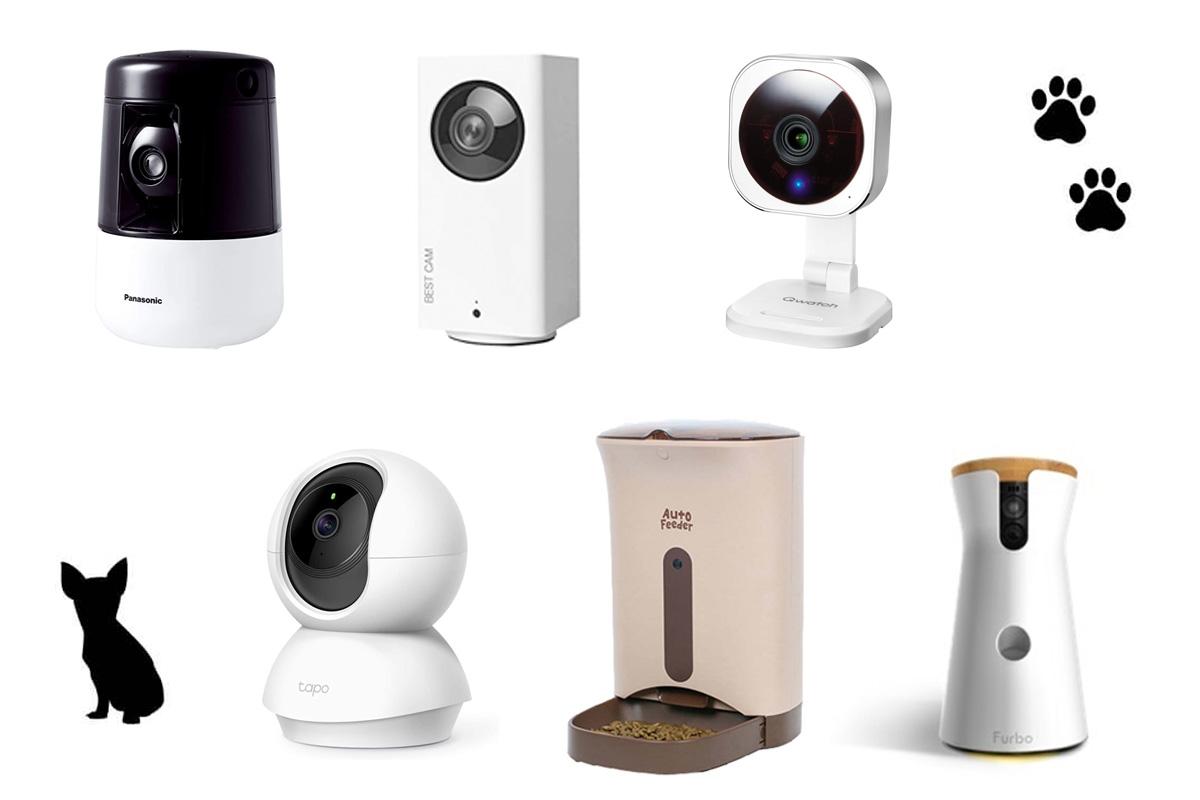 [最新] ペット見守りカメラおすすめ6選を一覧表で比較!安心して使えるペットカメラの選び方