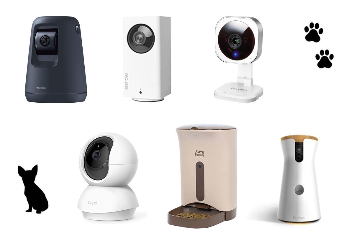 [最新] ペット見守りカメラおすすめ7選を一覧表で比較!安心して使えるペットカメラの選び方