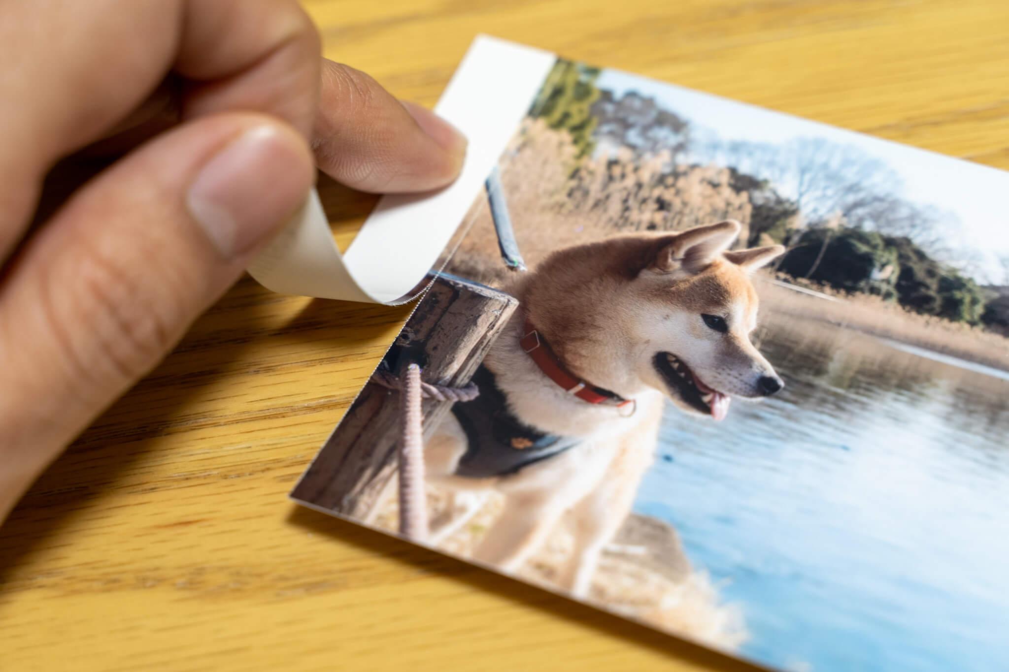 使ってみてわかった「Canon SELPHY CP1300」の注意点 Lサイズの用紙は余白を手で切り取る仕様