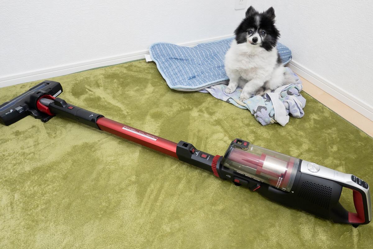 AQUAのコードレス掃除機 AQC-HF500レビュー!ペットと暮らすお家のための掃除機の実力とは
