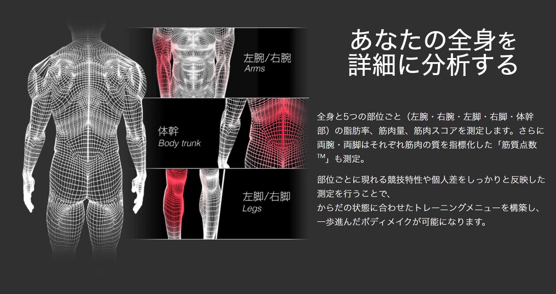 部位別に筋肉の量を測定できる