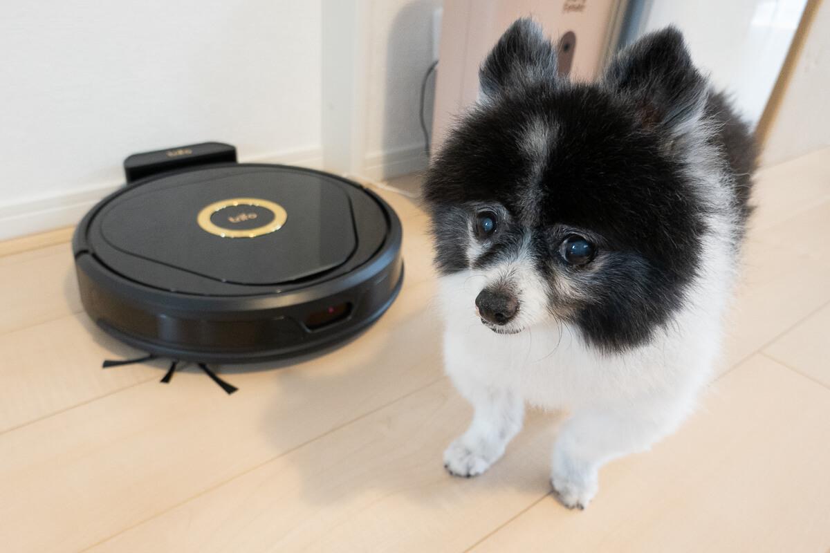 Trifoのロボット掃除機「Lucy(ルーシー)」の特長 吸引清掃が得意な「Lucy PET」もラインナップ